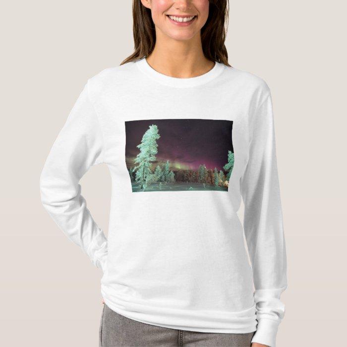Scandinavia, Finland, Lapland, Kakslauttanen, T-Shirt