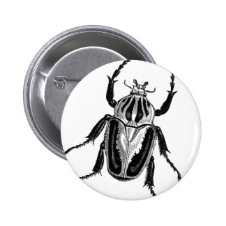 Scarab Beetle 2 Inch Round Button