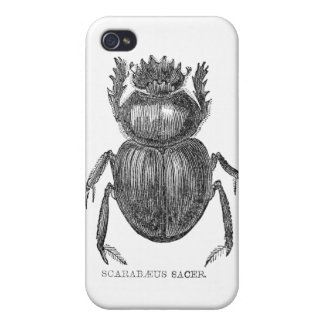 Scarab Beetle iPhone 4 Cases