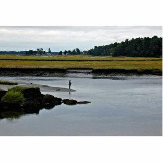 Scarborough Marsh (saltwater) Maine Photo Sculptures