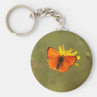 Scarce copper butterfly, Lycaena virgaureae Keychain