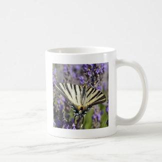 Scarce Swallowtail butterfly on lavender Coffee Mug