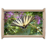 Scarce Swallowtail Butterfly Serving Tray