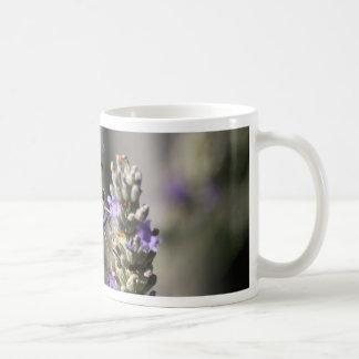 Scarce Swallowtail (Iphiclides podalirius) Coffee Mug