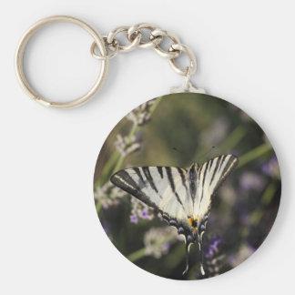 Scarce Swallowtail (Iphiclides podalirius) Keychain
