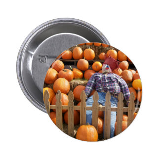 ScareCrow Pinback Buttons