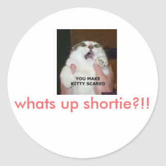 scared kitty, whats up shortie?!! classic round sticker
