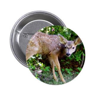 Scared little Deer Button