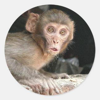 Scared monkey with big eyes round sticker