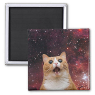 scaredy cat in space 2 inch square magnet