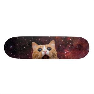 scaredy cat in space - feline skateboard