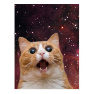 scaredy cat in space postcard