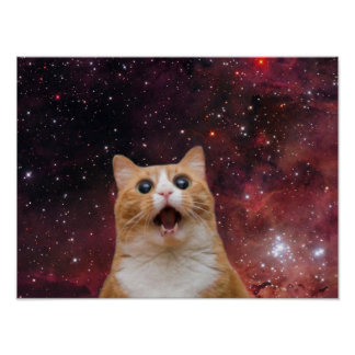 scaredy cat in space poster