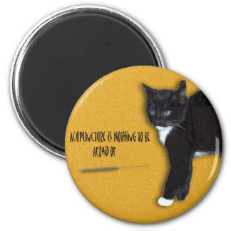 Scaredy Cat Magnet