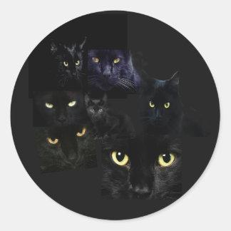 Scaredy Cats Sticker