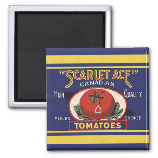 Scarlet Ace Tomatoes Magnet
