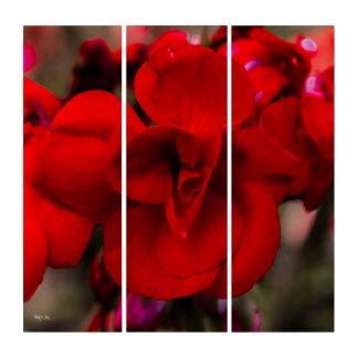 Scarlet Begonias Triptych