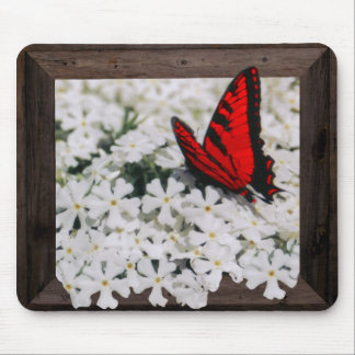 SCARLET BUTTERFLY OF BOONVILLE -MOUSEPADS MOUSE PAD