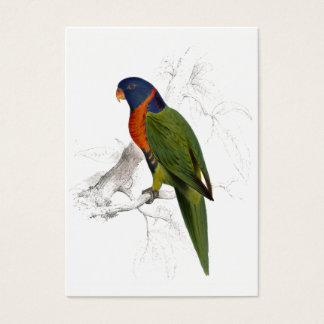Scarlet-Collared Parrakeet by Edward Lear Business Card