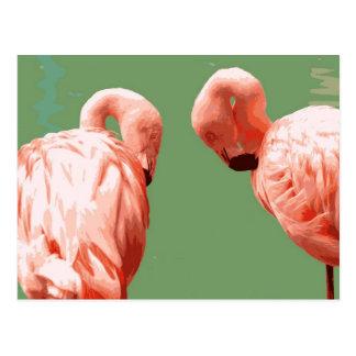 Scarlet Flamingo Postcard