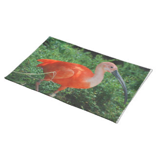 Scarlet Ibis Placemat Cloth Placemat