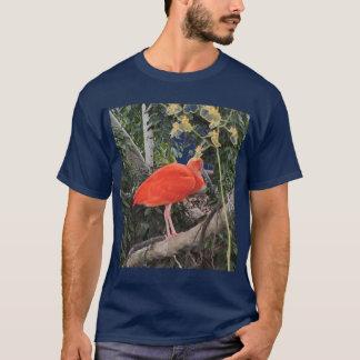 Scarlet ibis - shirt