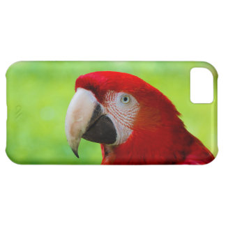 Scarlet Macaw Ara Macao American Parrot iPhone 5C Case