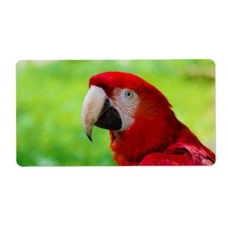 Scarlet Macaw Ara Macao American Parrot Label