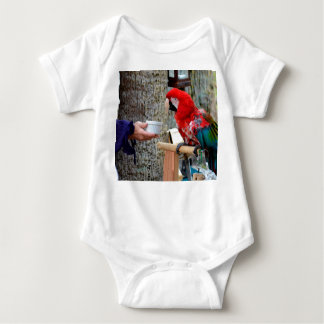 scarlet macaw baby offered dish baby bodysuit