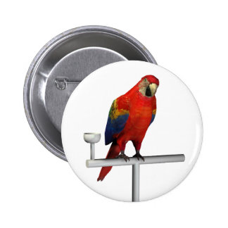 Scarlet Macaw Button