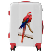 Scarlet Macaw carry-on luggage