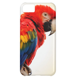 Scarlet Macaw iPhone 5C Case