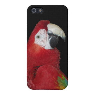 Scarlet Macaw Case For iPhone 5
