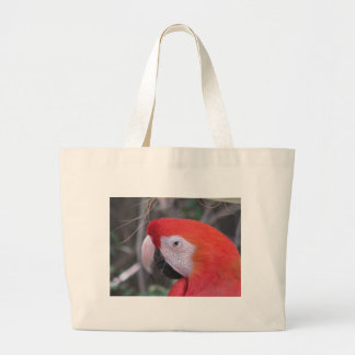 Scarlet Macaw - Close Up Bags