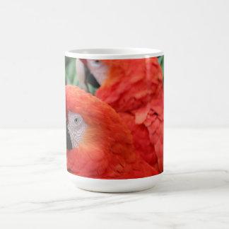 Scarlet Macaw Coffee Mug