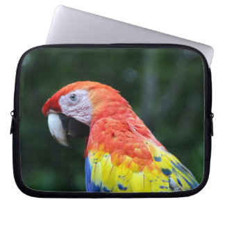 scarlet macaw face laptop sleeves