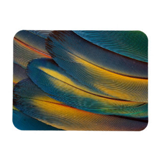 Scarlet Macaw feather close up Magnet