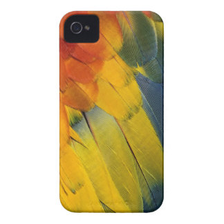 Scarlet Macaw feather pattern, Ara macao Blackberry Cases