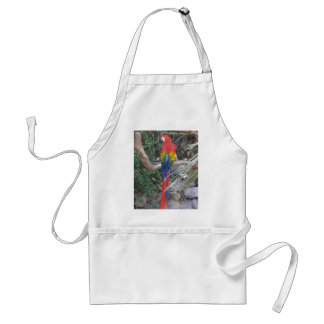 Scarlet Macaw - From the Back Aprons