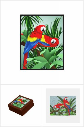 Scarlet Macaw Gifts