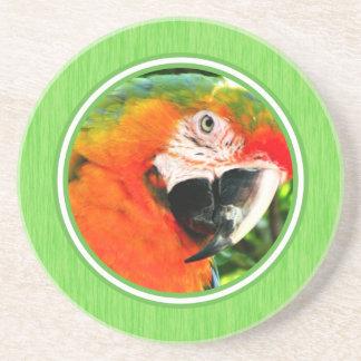 Scarlet Macaw Green Coaster
