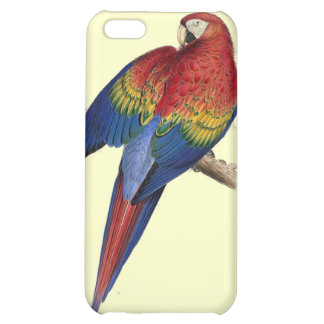 Scarlet Macaw Illustration iPhone 5C Cases