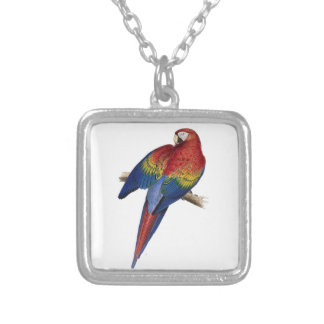 Scarlet Macaw Illustration Necklaces