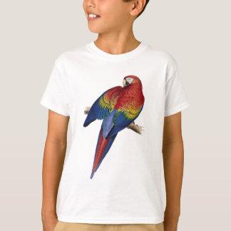 Scarlet Macaw Illustration T-Shirt