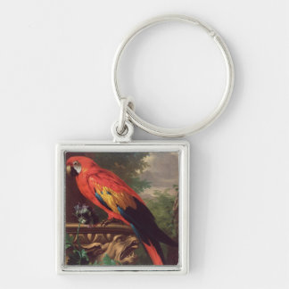 Scarlet Macaw in a Landscape (oil on canvas) Keychain