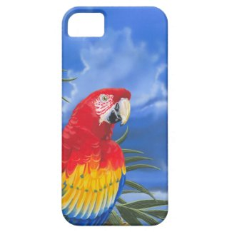 Scarlet Macaw iPhone 5 Case-Mate Case