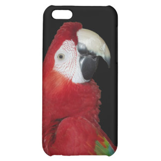 Scarlet Macaw iPhone 5C Covers