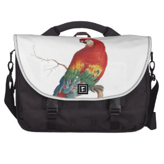 Scarlet Macaw Bag For Laptop
