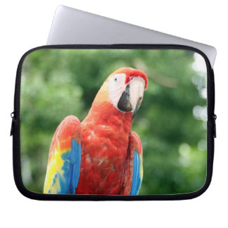 scarlet macaw laptop computer sleeves