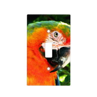 Scarlet Macaw Light Switch Cover
